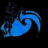 cedz logo